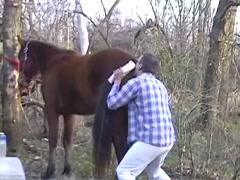 Fun Wth The Stallion - Bestialitysextaboo - Animal Bestiality->