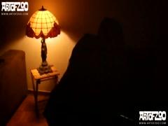 Samy Dog Discipline - ArtofZoo