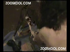 Zooskool - Amateur - Latin Lover