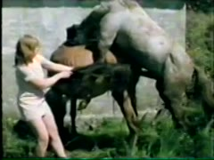 Animal Zoo - Bizarre - Farm Sex