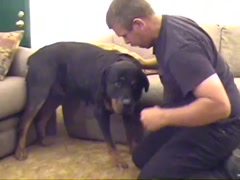 Caledonian - My Horny Rottweiler Lover