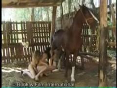 bfi horsesex show